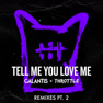 Tell Me You Love Me (Ari Remix)