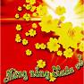 Mừng Nắng Xuân Về