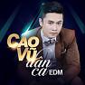 Tùy Hứng Lý Qua Cầu (Remix) - Cao Vũ