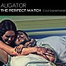 The Perfect Match (Aligator's Chill Out Mix)
