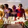 Playa (Arena Y Sol Remix)